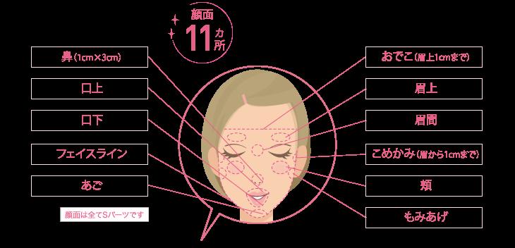 plan_part_face